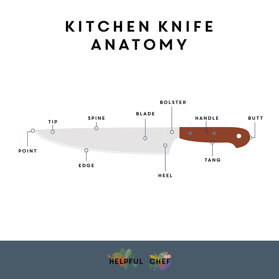infographic showing the different parts of a knife